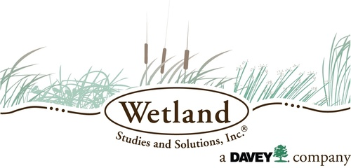 Wetland Studies and Solutions